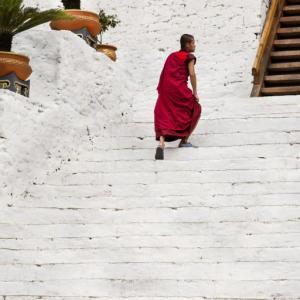 AT THE STAIRS OF PUNAKHA DZONG BHUTAN - 2