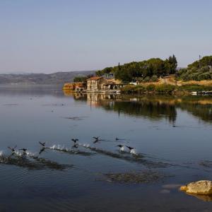 LAKE MARMARA MANISA TURKEY - 4